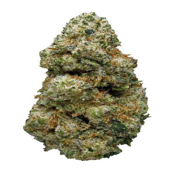 ACDC Weed Strain