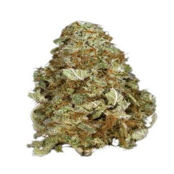 Grape Kush Strain Online Store