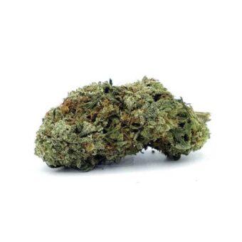 Buy LSD Weeds Strain Online